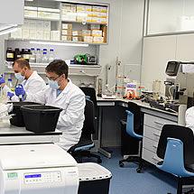 R&D Laboratory at Algenex facilities in Tres Cantos (Madrid)